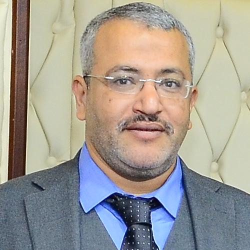 محمود الفداوى